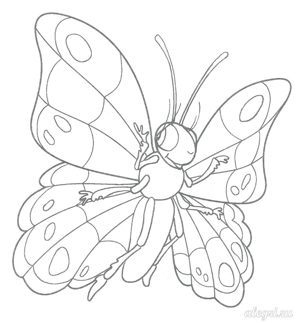 Раскраска Бабочка для детей 4-5 лет