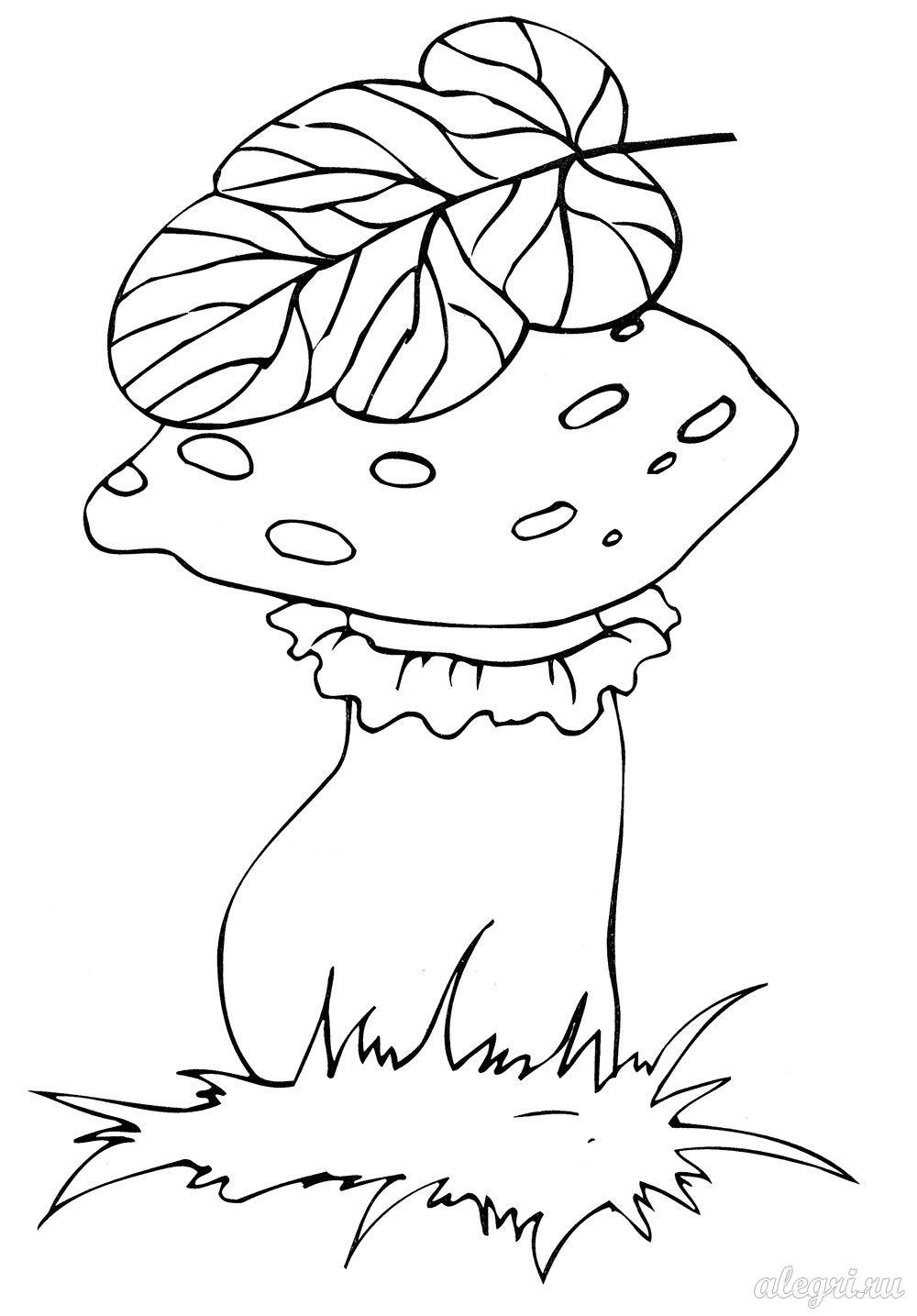Осенняя раскраска для детей старшего дошкольного возраста