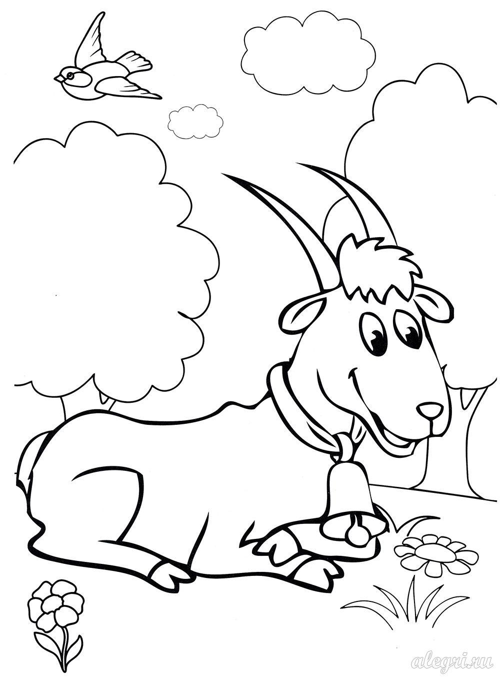 Коза. Раскраска для детей дошкольного возраста