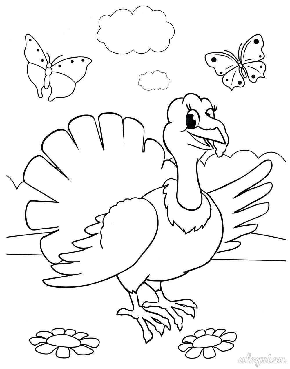 Индюк. Раскраска для детей дошкольников