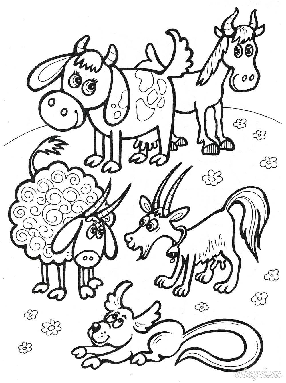 Картинка путаница животные