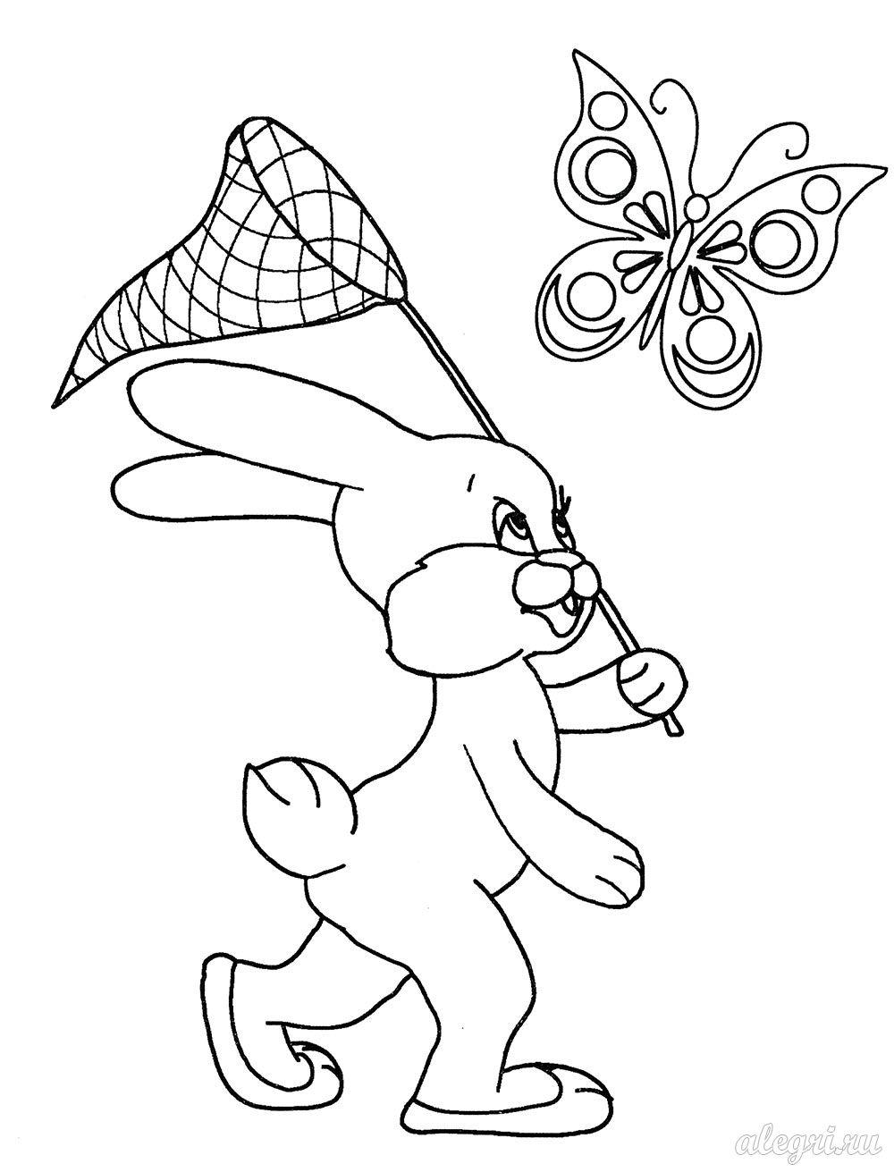 раскраска для детей зайчик ловит бабочек