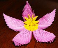 article2353 Цветок лотоса из бумаги в технике оригами (мастер-класс). Воспитателям детских садов, школьным учителям и педагогам