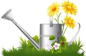 Загадки про сад и огород для 2-3 класса с ответами