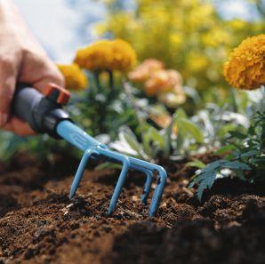 Нужна ли осенняя перекопка огорода