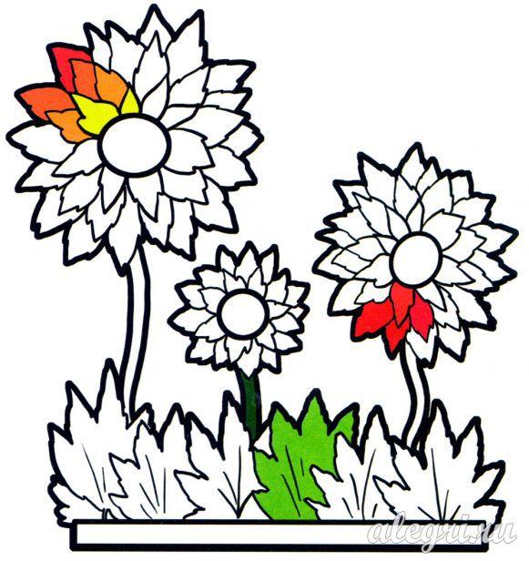 Раскраска. Осенние цветы